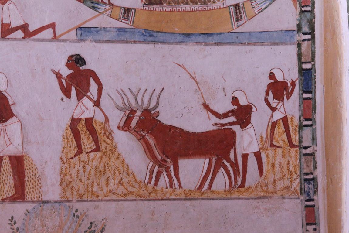 Piétinement des épis tombe de Menna